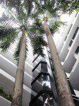 Outside Atrium, Las Vegas Hotel, Panama City, Panama