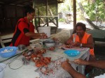 Picking Coconut Crabs