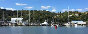 Summer at Riverside Marina in Whangarei, New Zealand